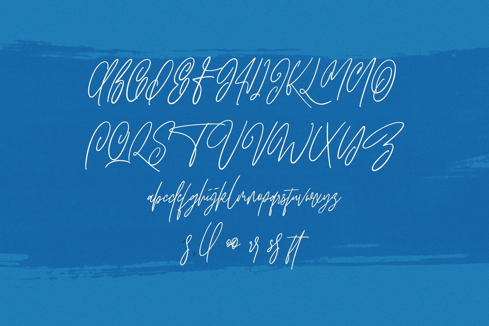 Hawkins Signature Brush Font example image 8