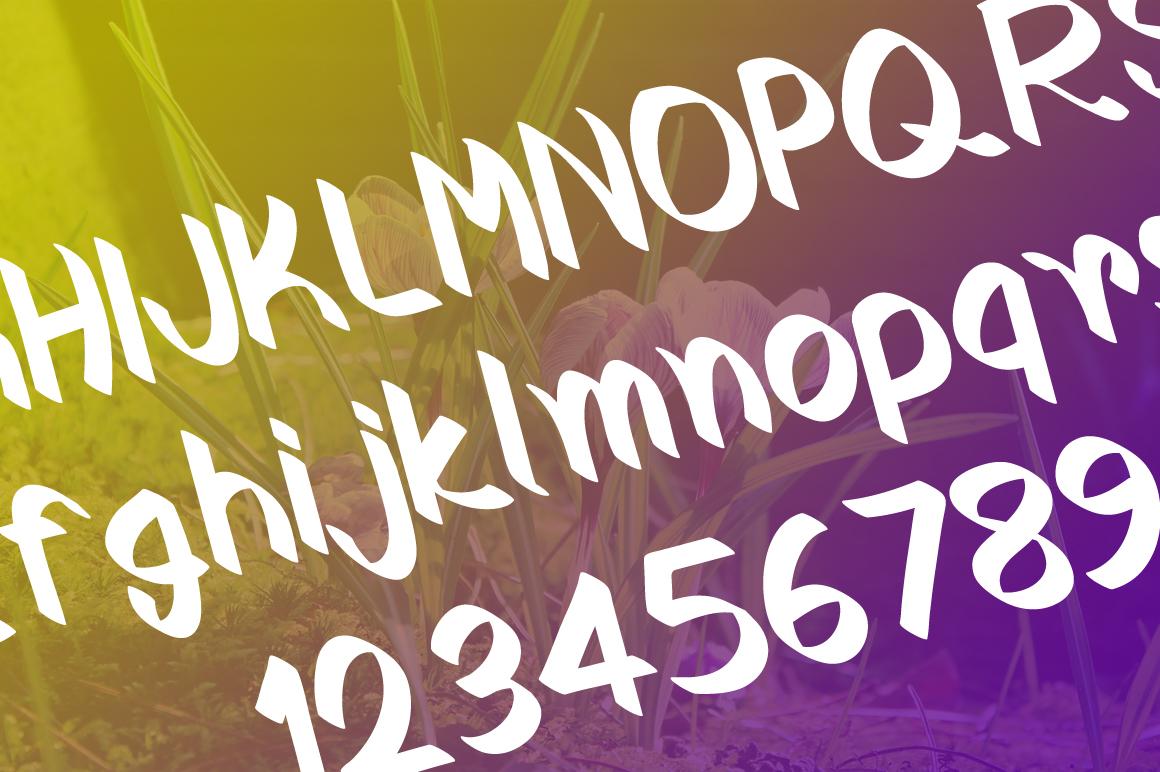 Crocus Typeface example image 5