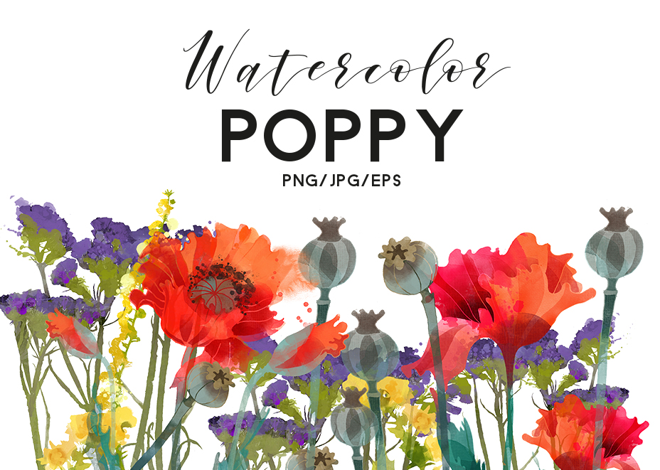 Watercolor poppy example image 1