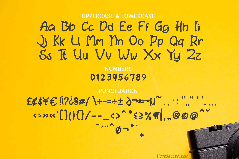 Bonita example image 7