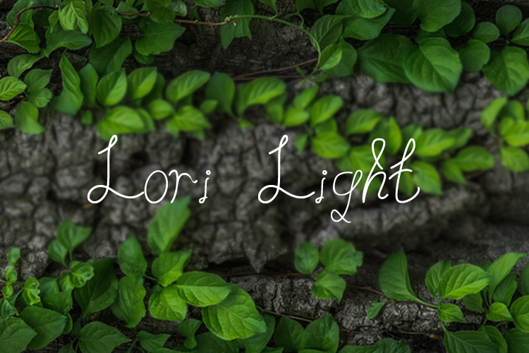 Lori Light | Font example image 1