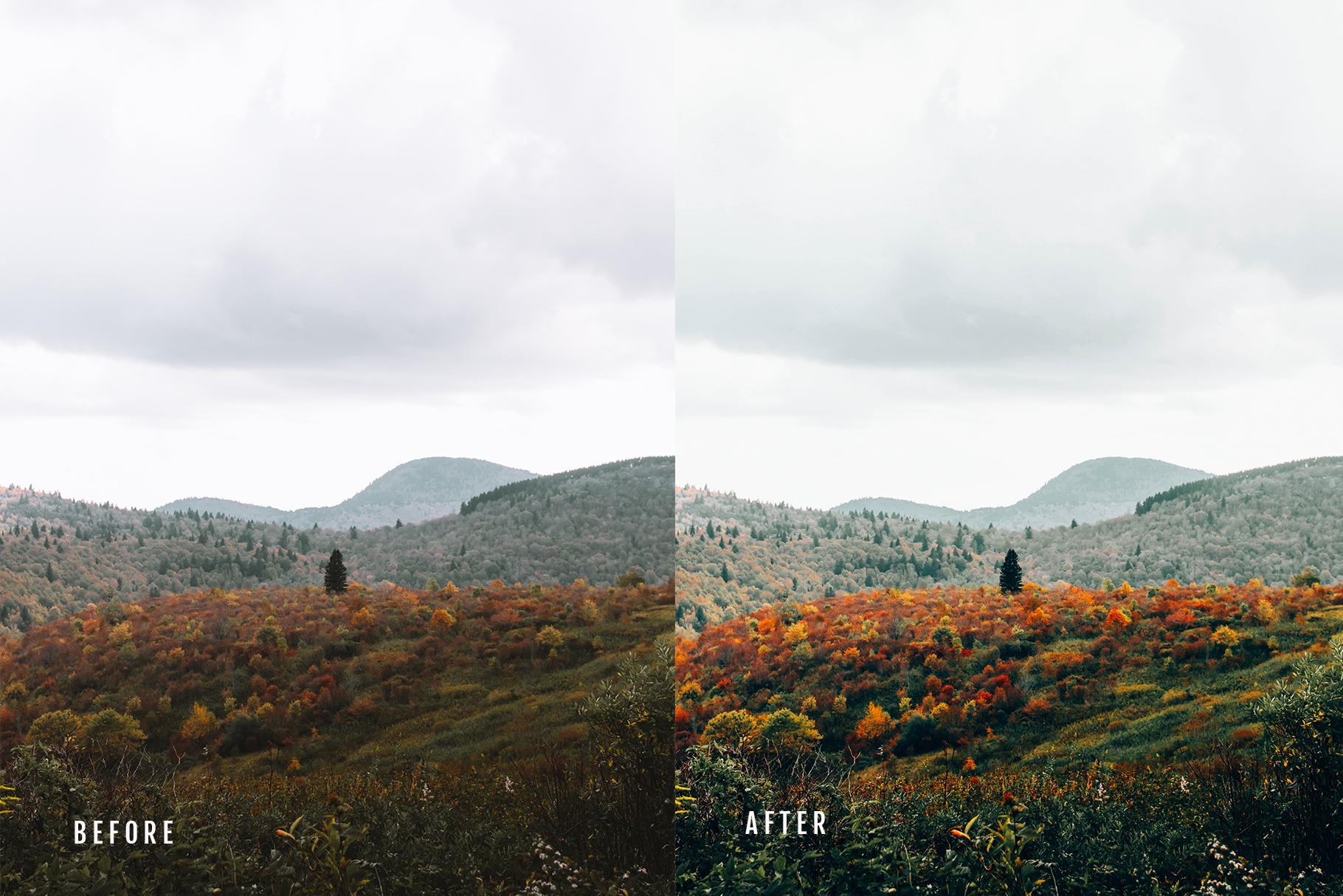 Oneday Film Lightroom preset example image 7