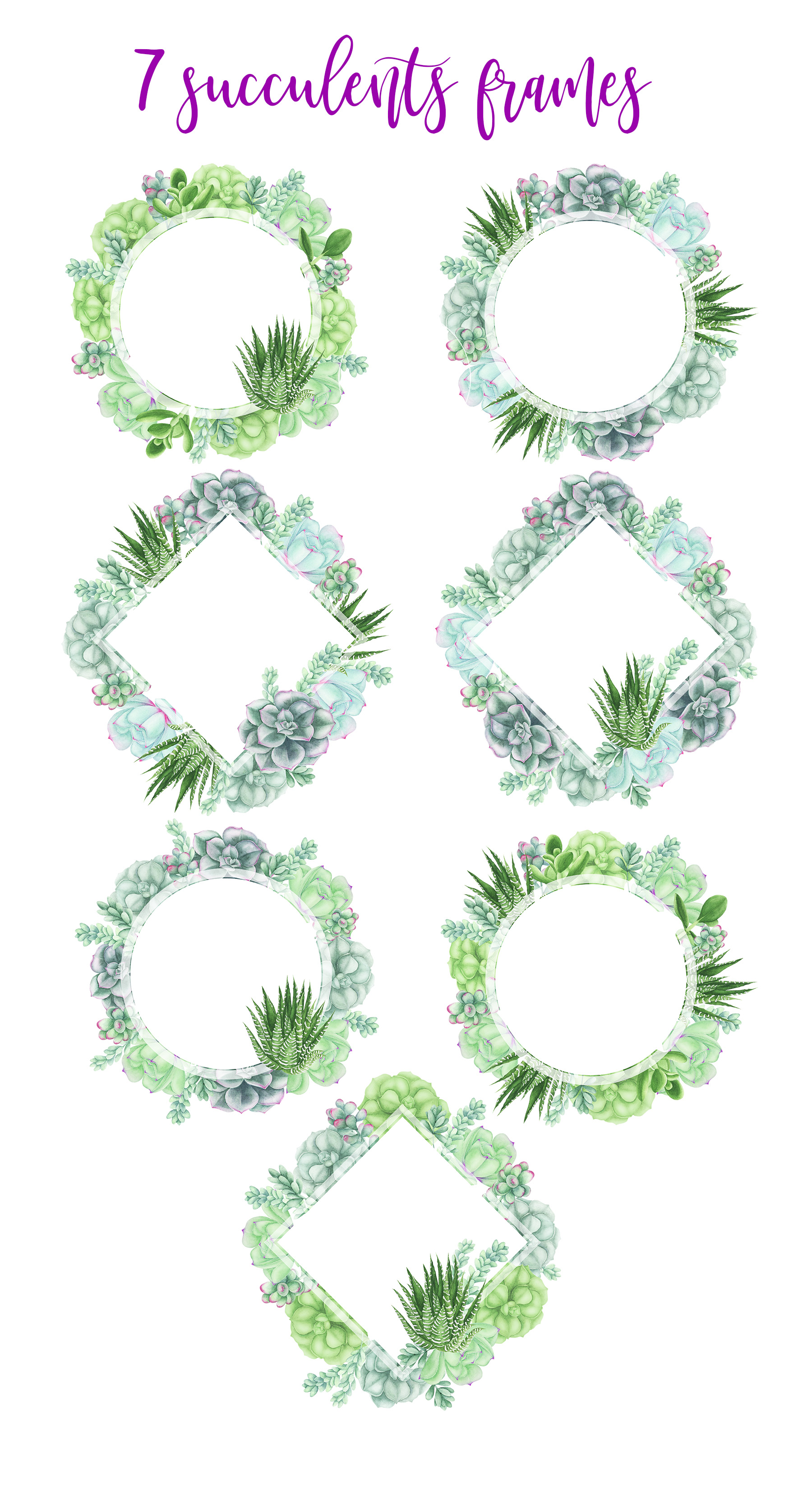 Succulents Frames and Wreaths example image 2