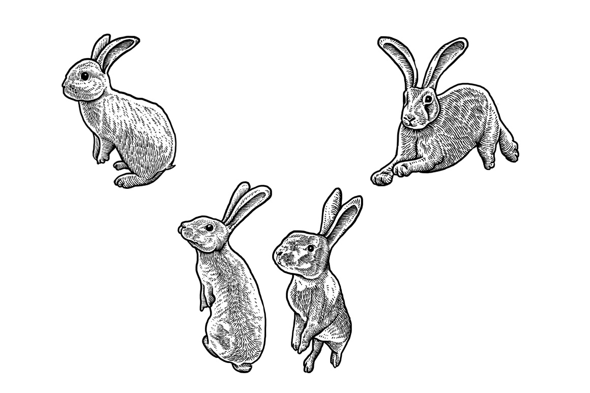 Rabbits Collection Art example image 4