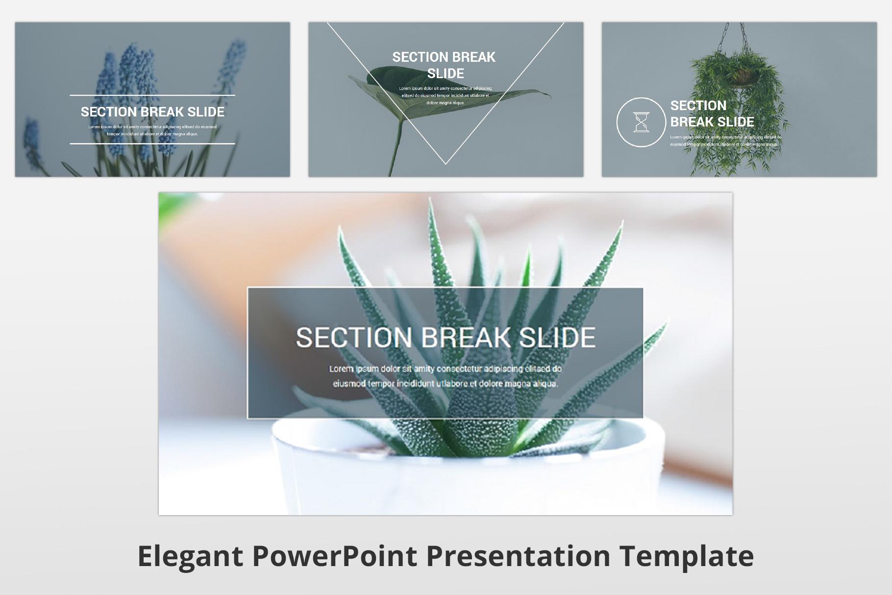 Elegant multipurpose PowerPoint Presentation Template example image 21