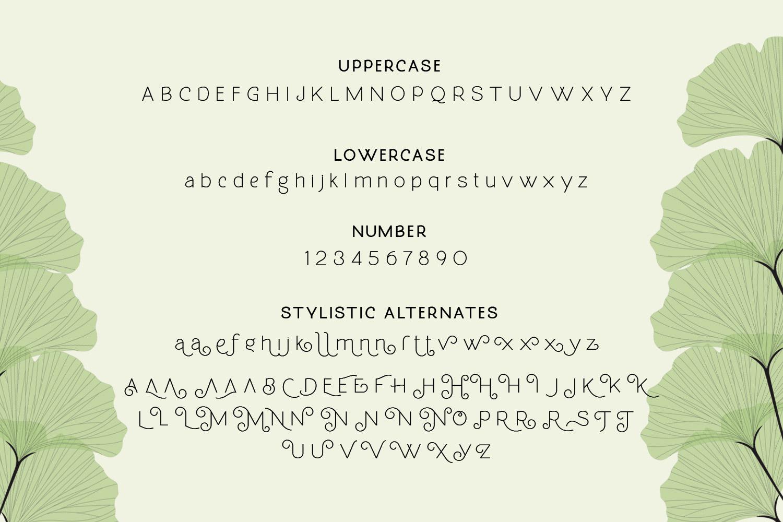 Molga font example image 8