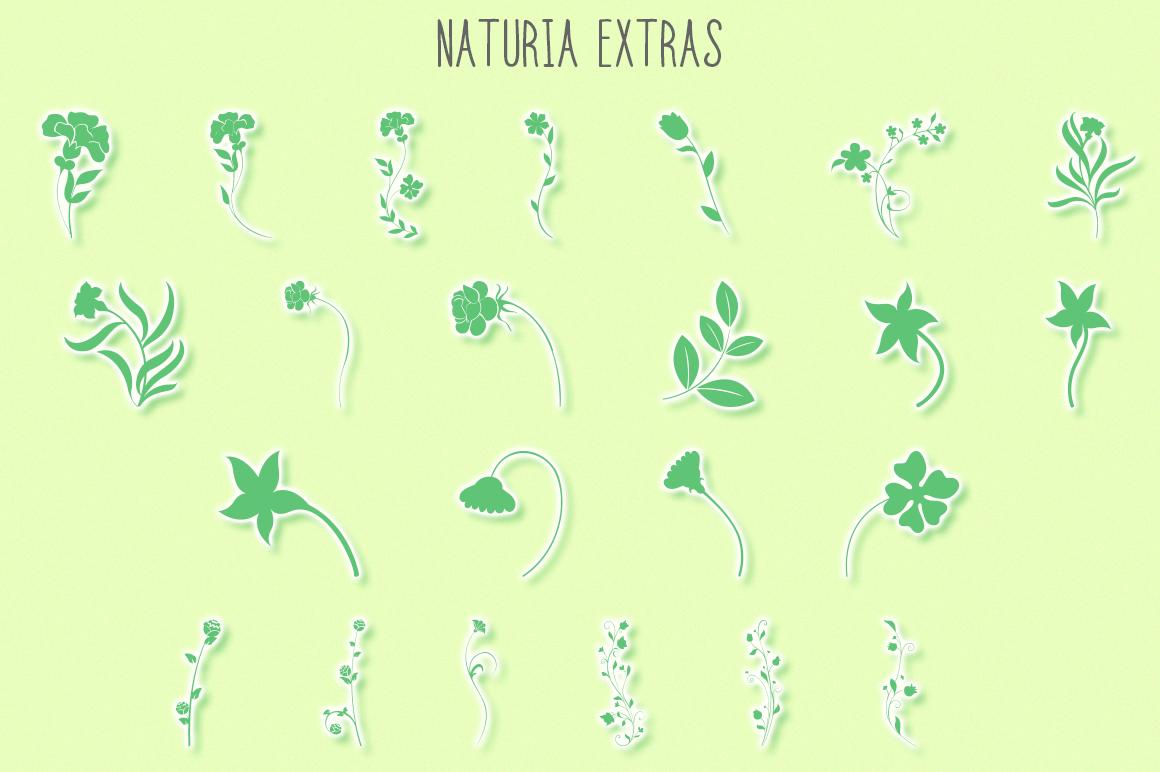 Naturia Floral Font & Bonus Extras example image 4