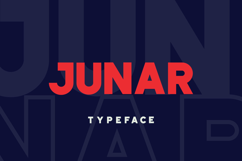 JUNAR example image 1