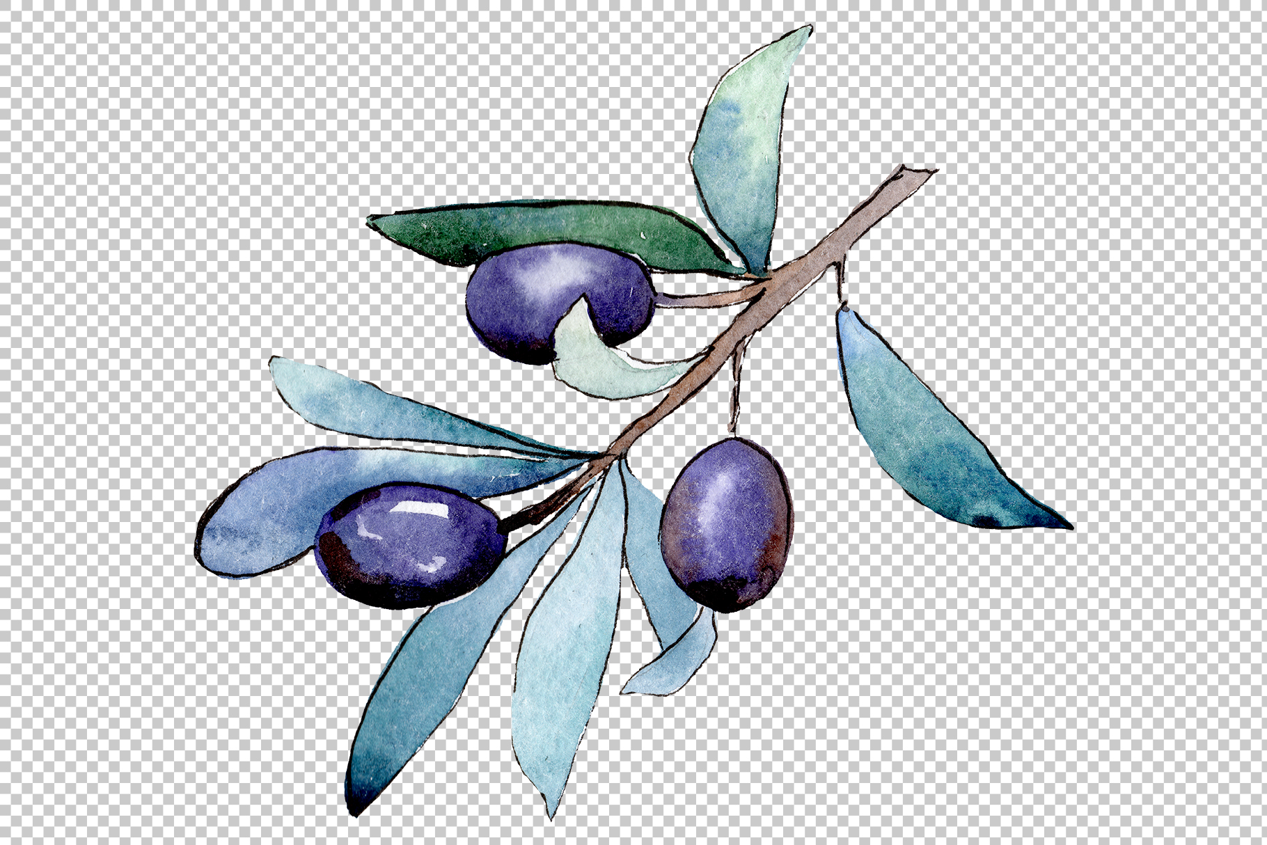 Watercolor olives PNG set example image 4