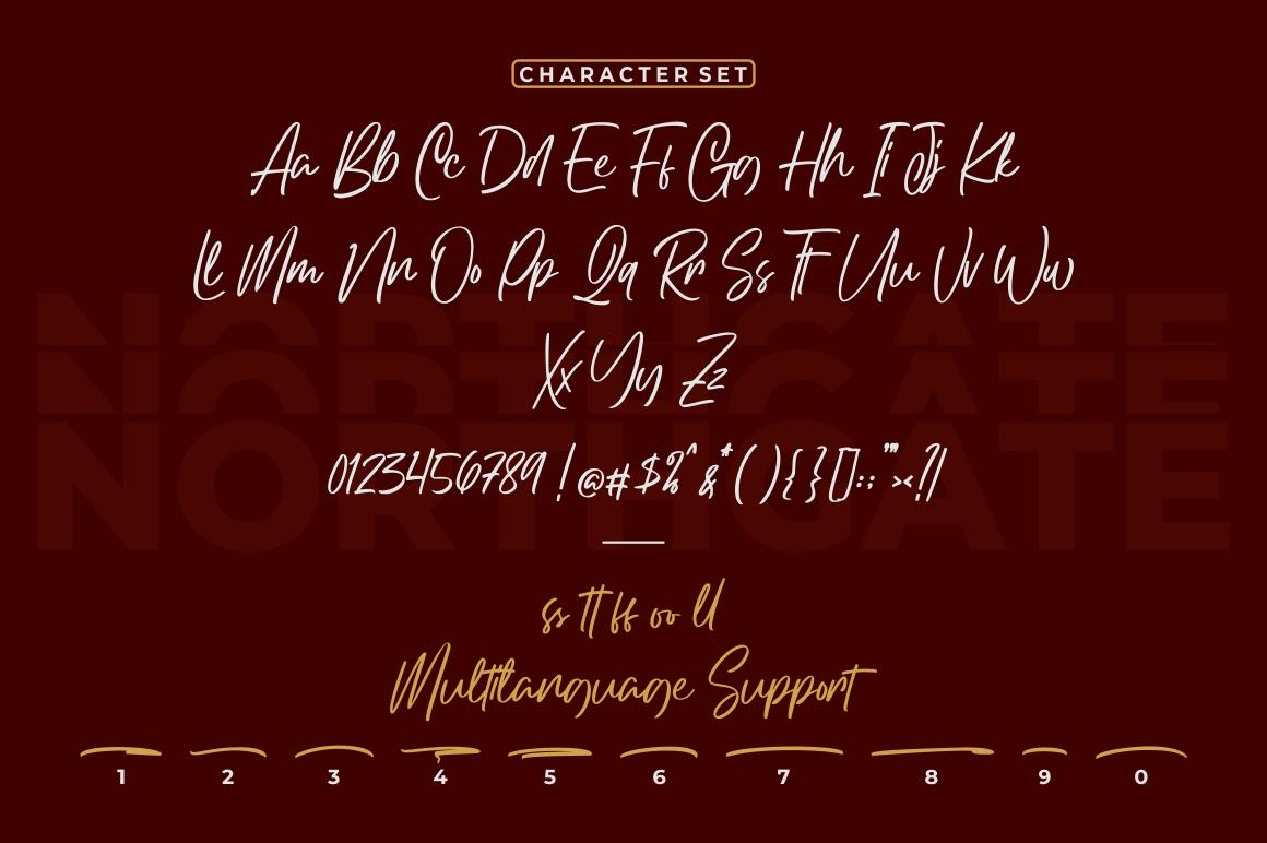 Northgate - Stylish Handwritten Font example image 6