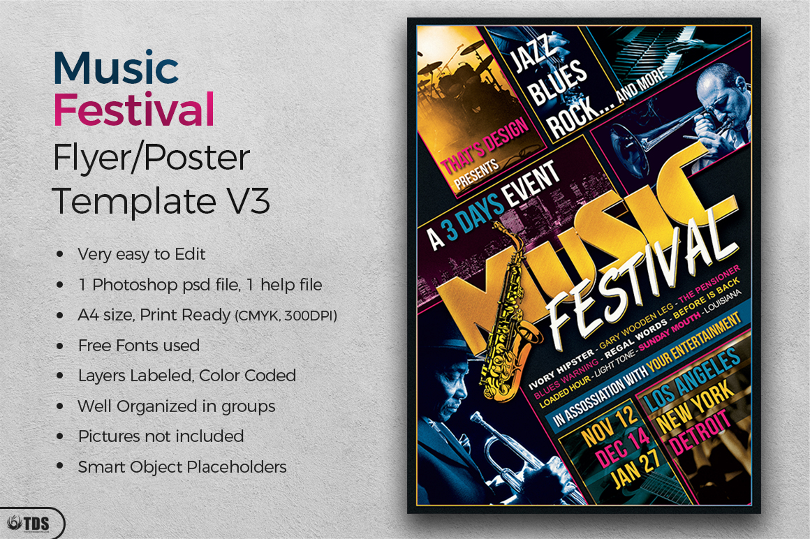 Music Festival Flyer Template V3 example image 2