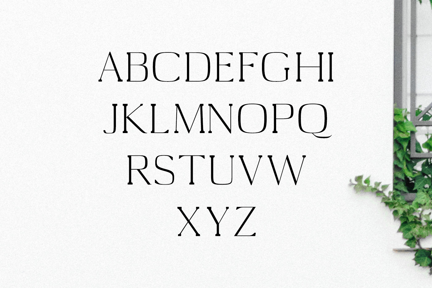 Medric Serif Font Family example image 4