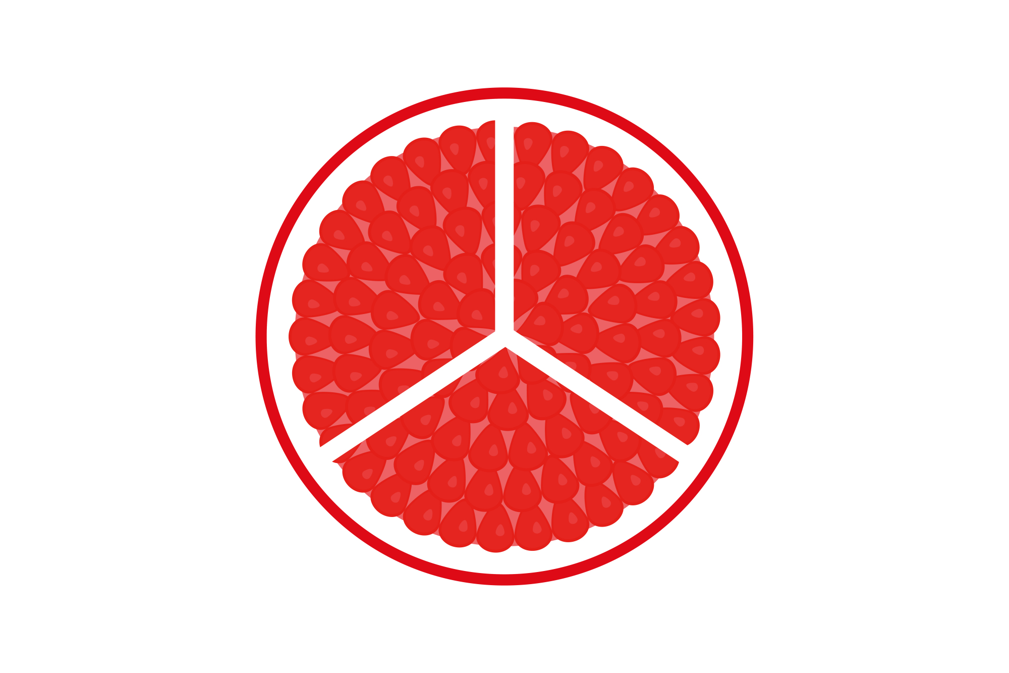 Collection of vector fruit icons example image 11