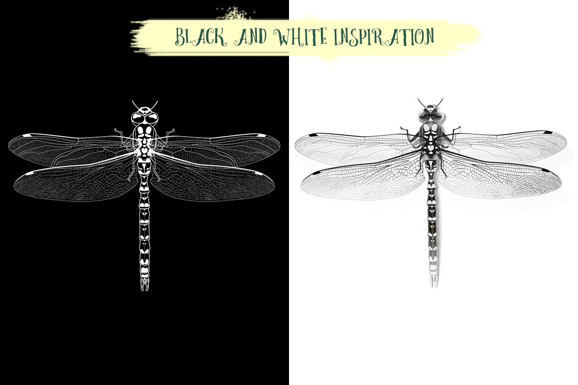 Dragonfly inspiration example image 2