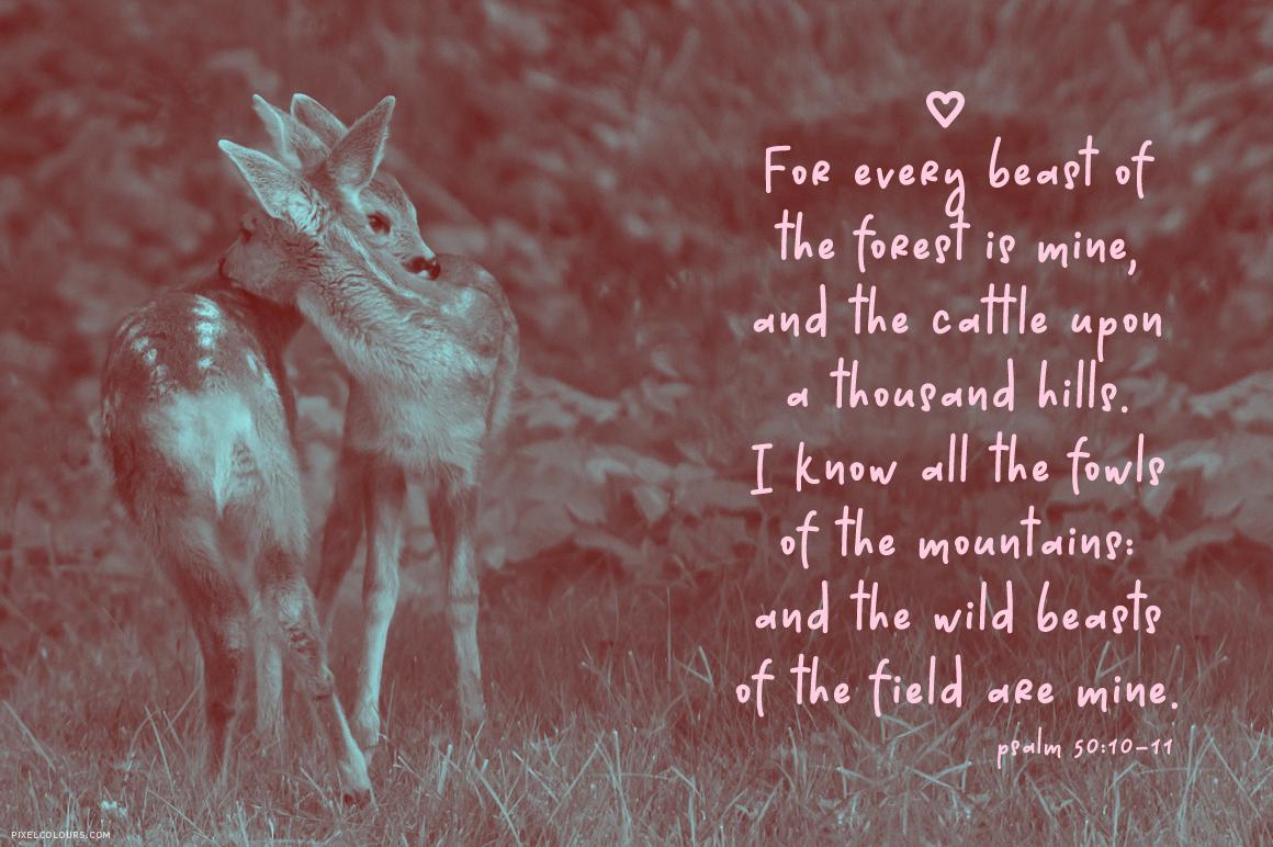 Dear Deer Font example image 4