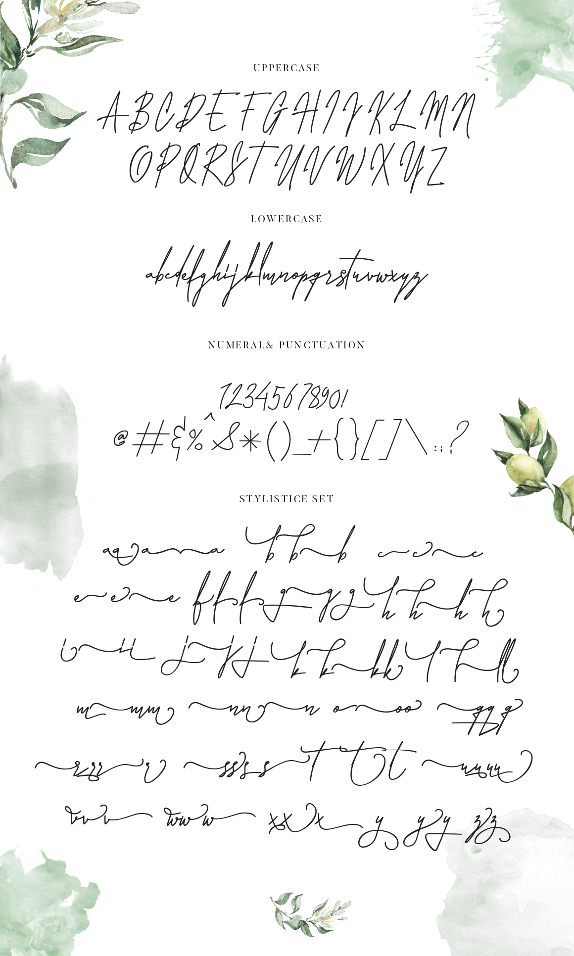 Laura Hellaw a lovely script font example image 3