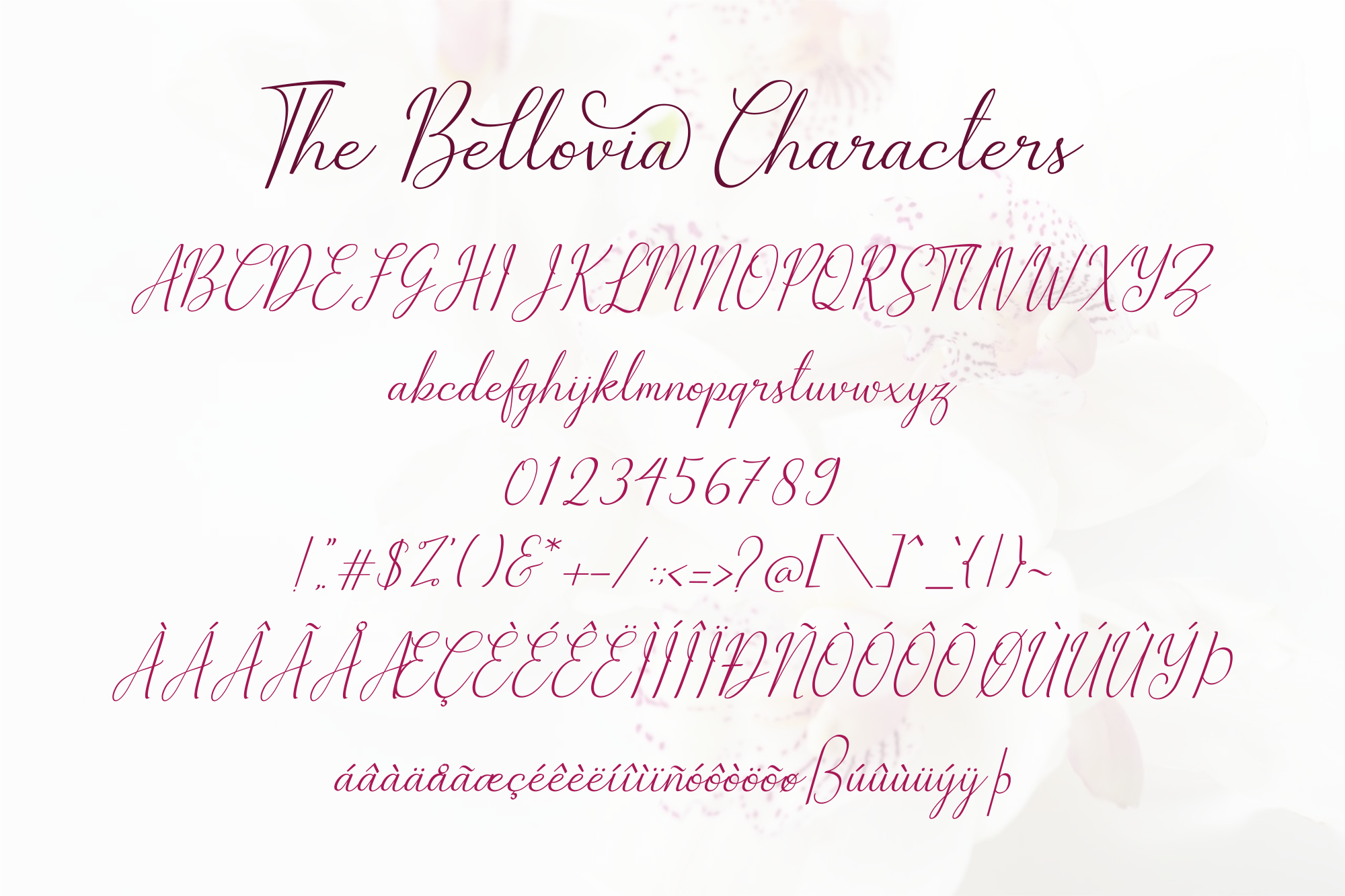 The Bellovia Font Duo example image 11
