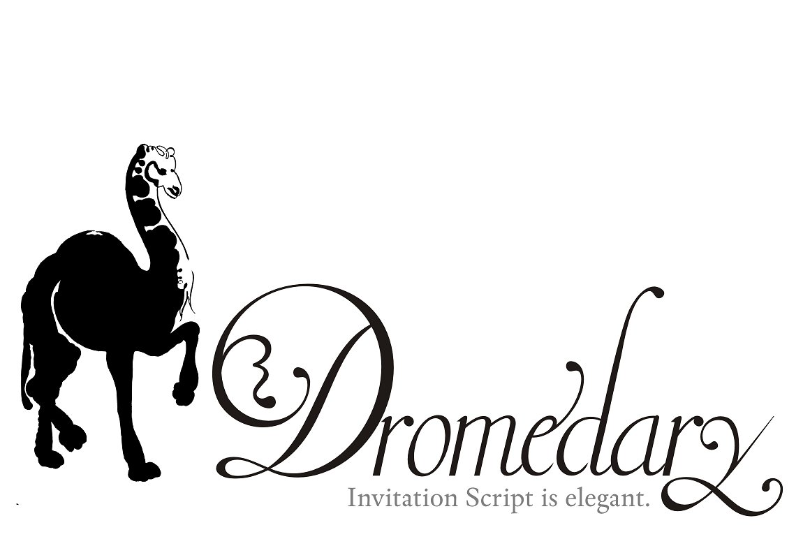 Invitation Script example image 4