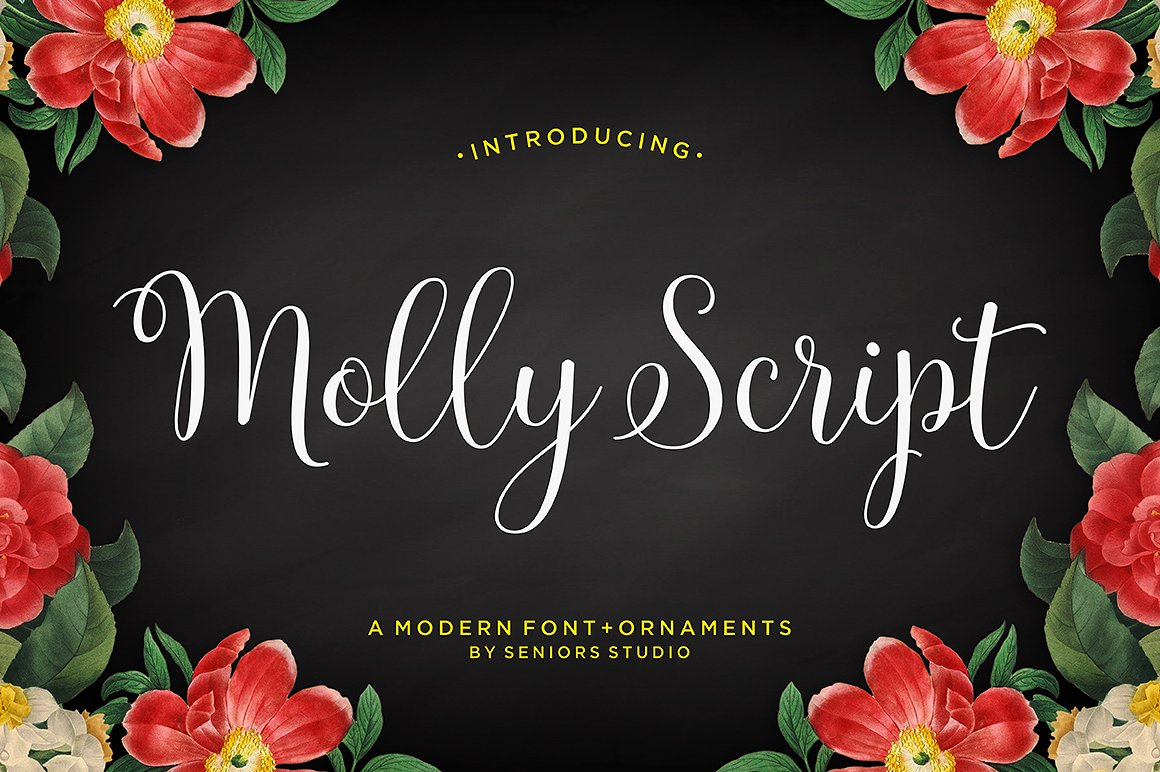Molly Script example image 1