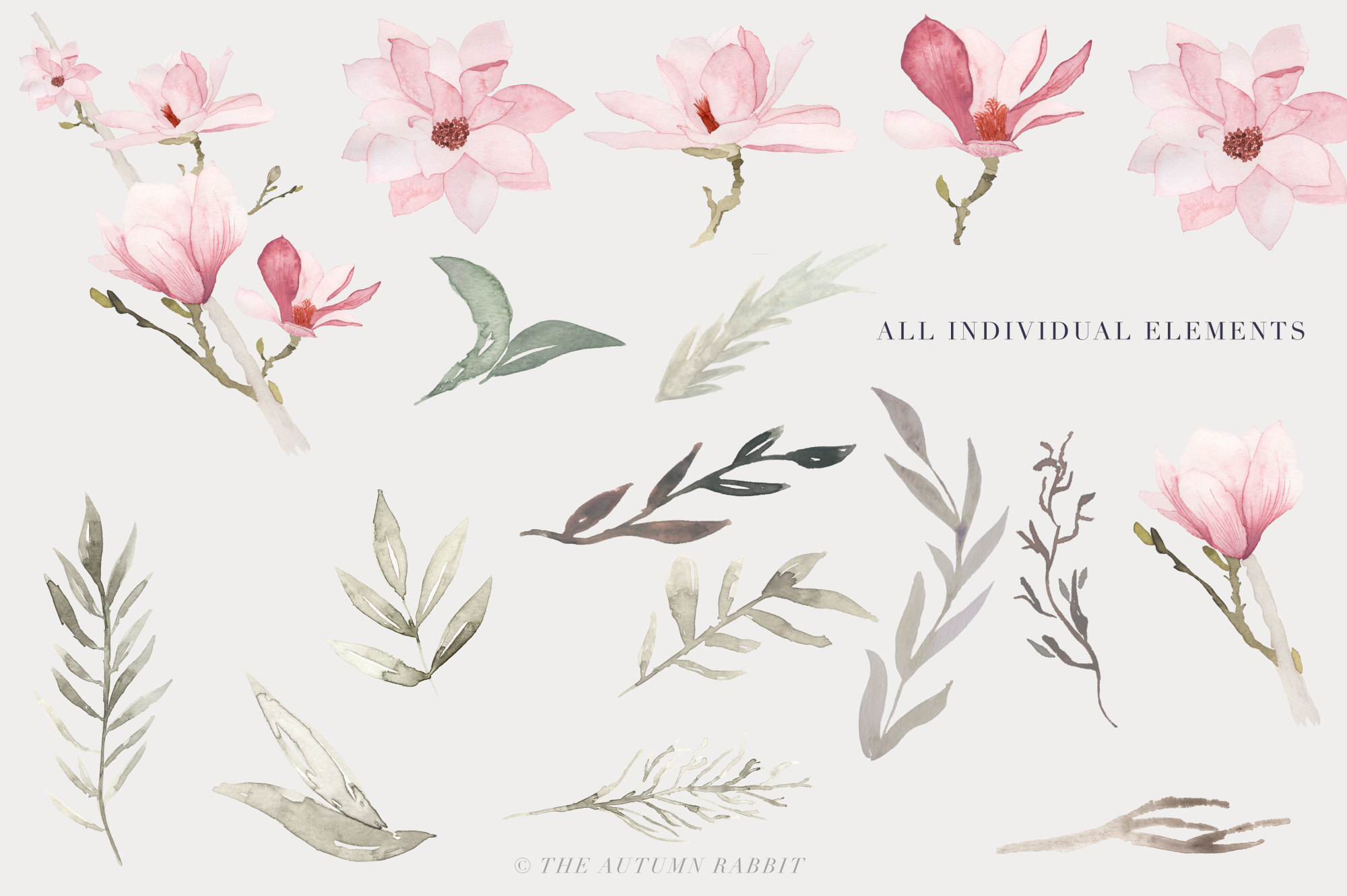 Watercolor Magnolia Floral Clipart example image 4