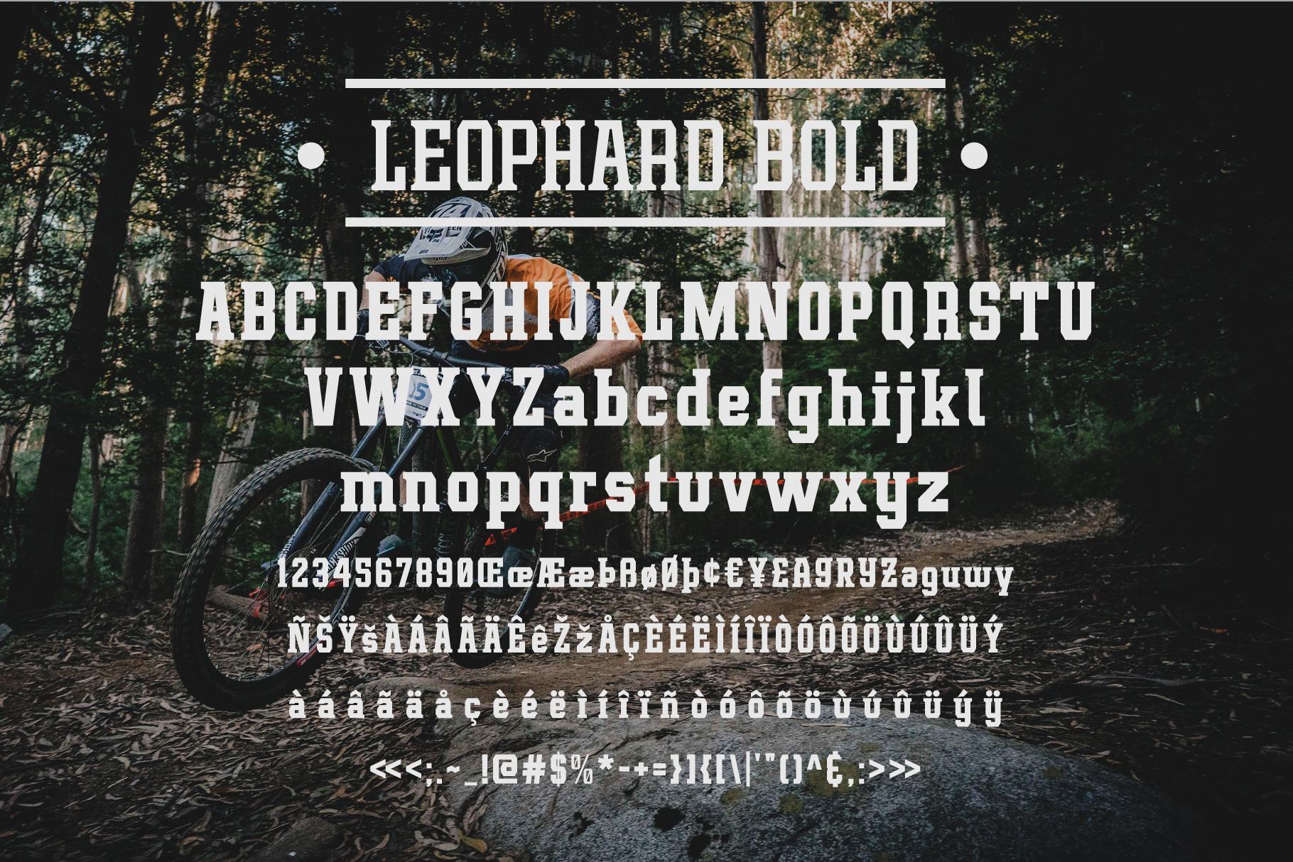 Leophard Font Family example image 2