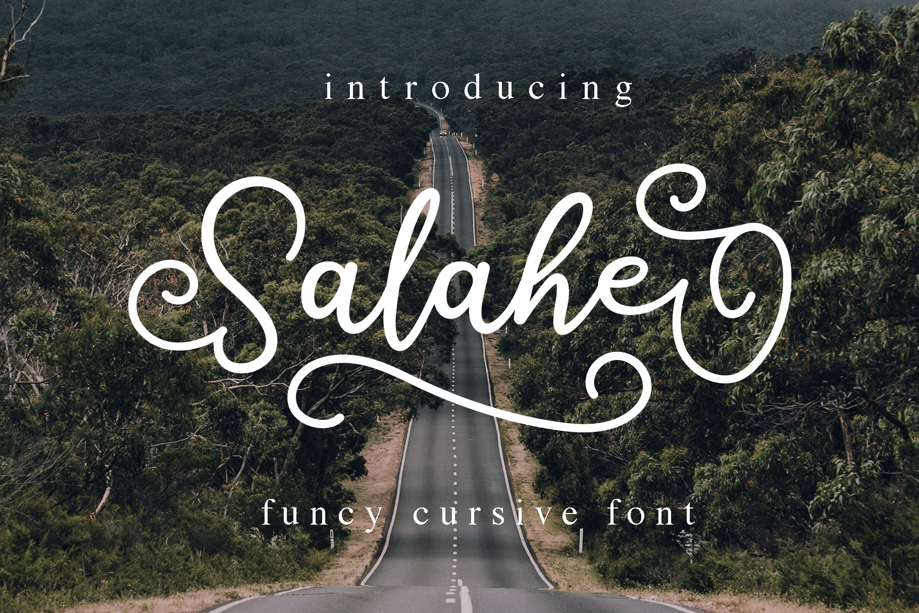 Salahe - a funcy cursive font example image 1