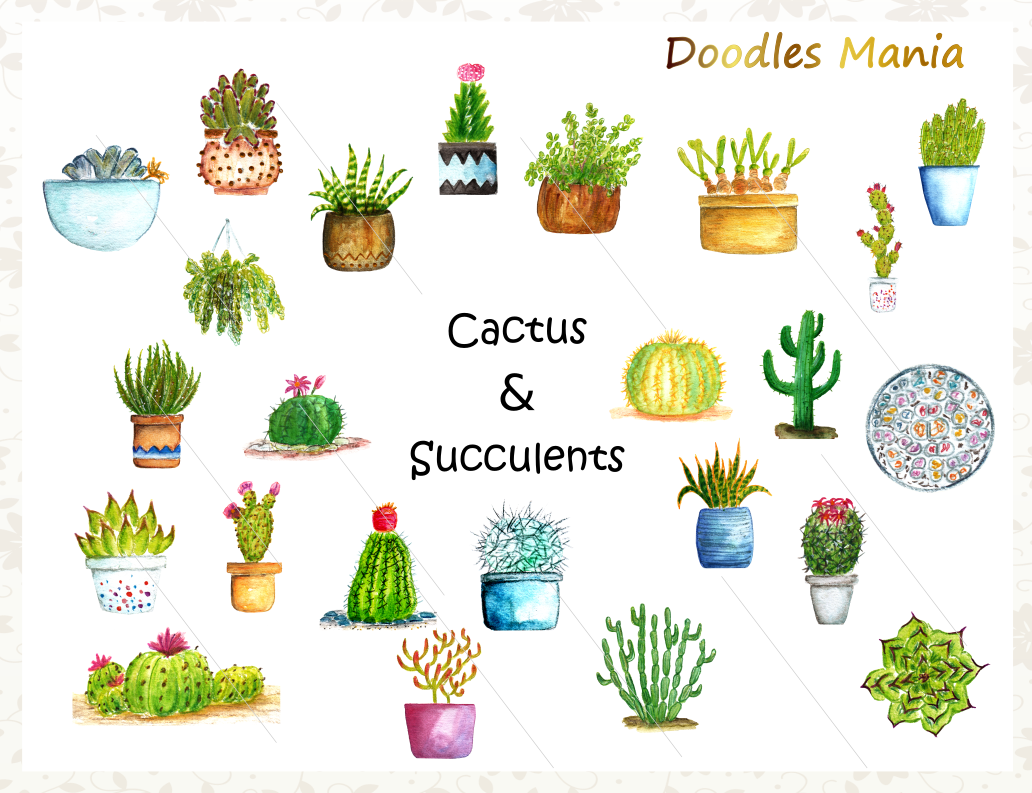 Cactus Vector Clipart Collection example image 2