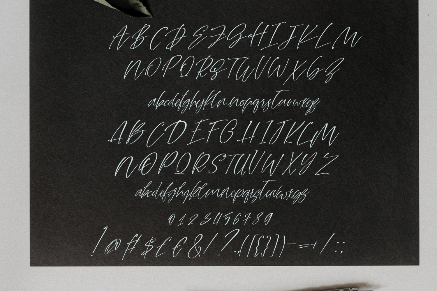 Dream Ink. Textured Script Font example image 7