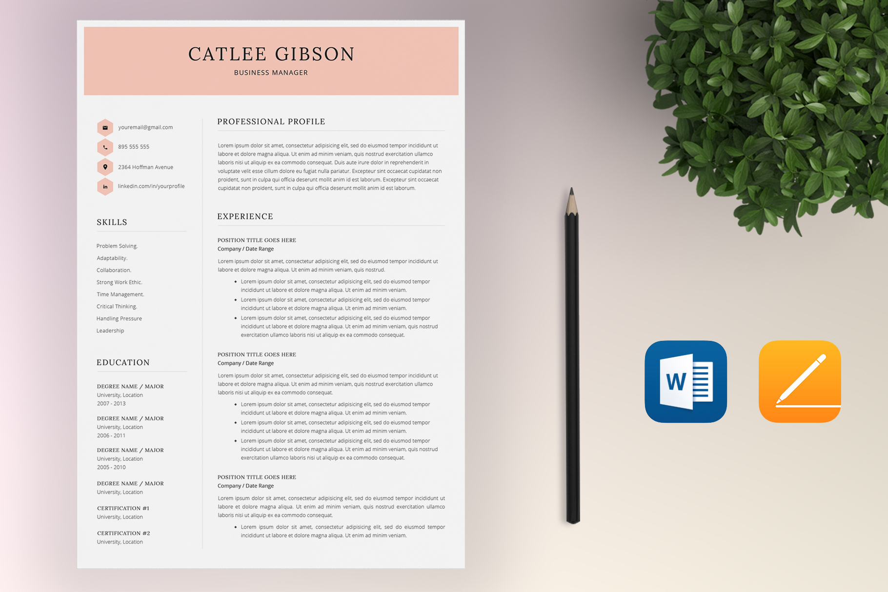 Resume Template Bundle | 4 Pages and Cover Letter example image 4