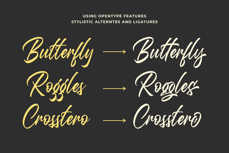 Questario - Stylish Script Font example image 5