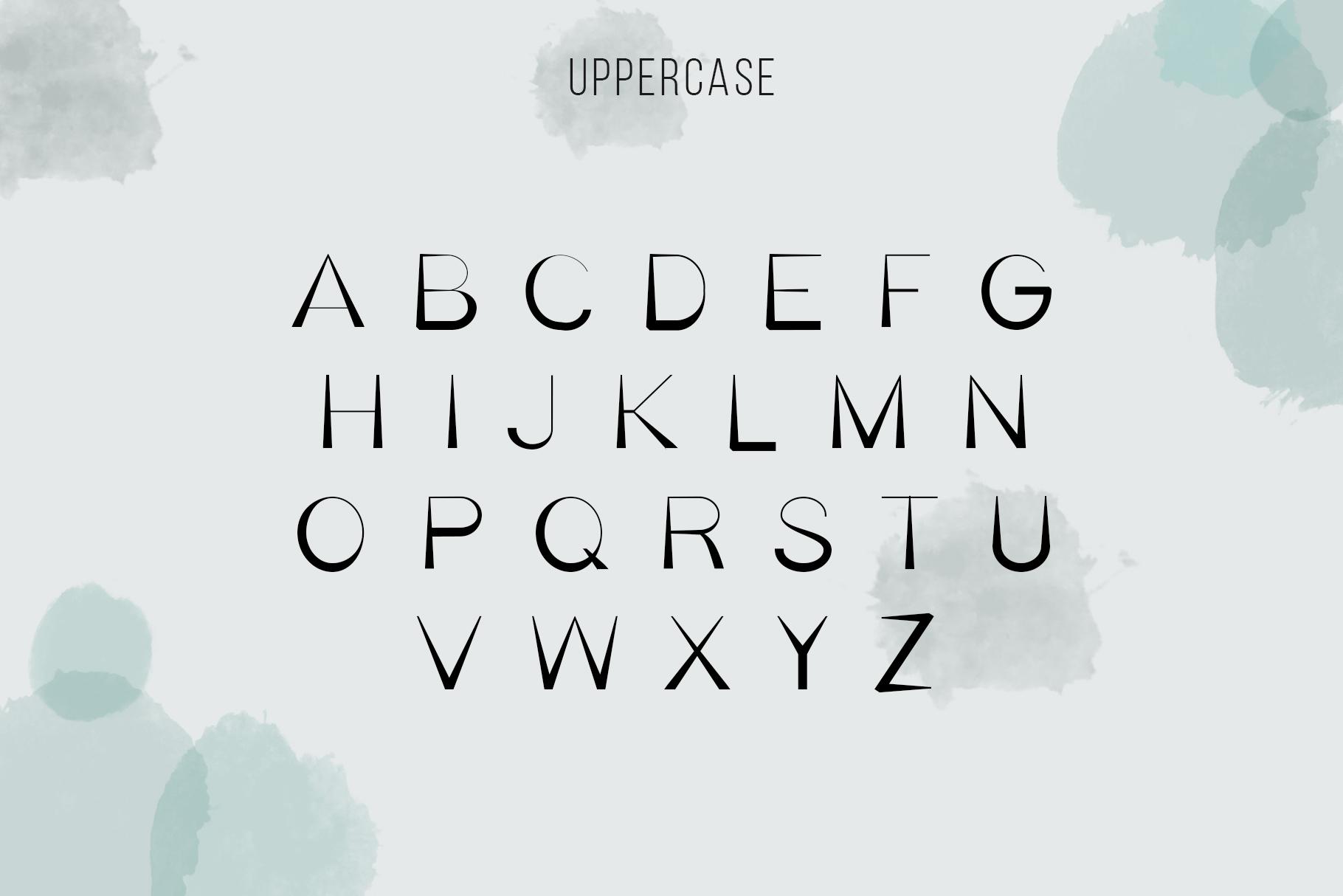 Bella Serif Font Family example image 2