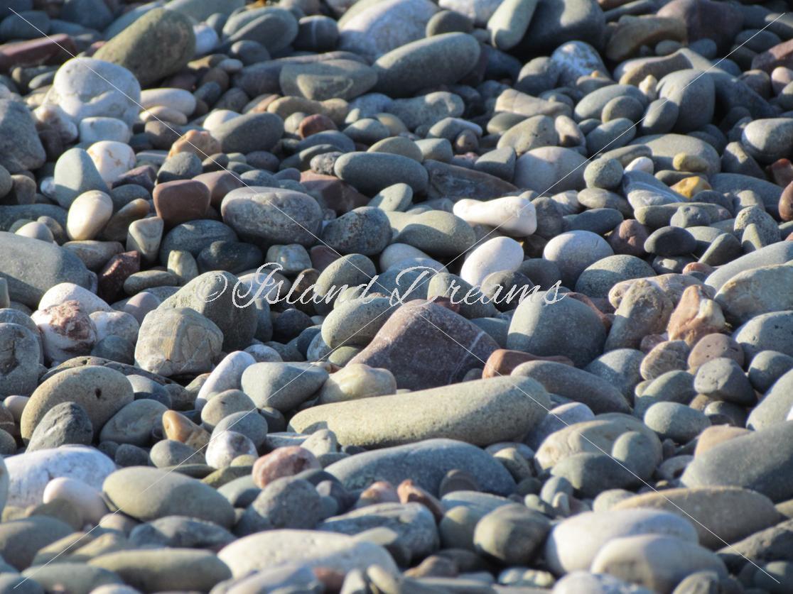 Beach Bundle example image 2