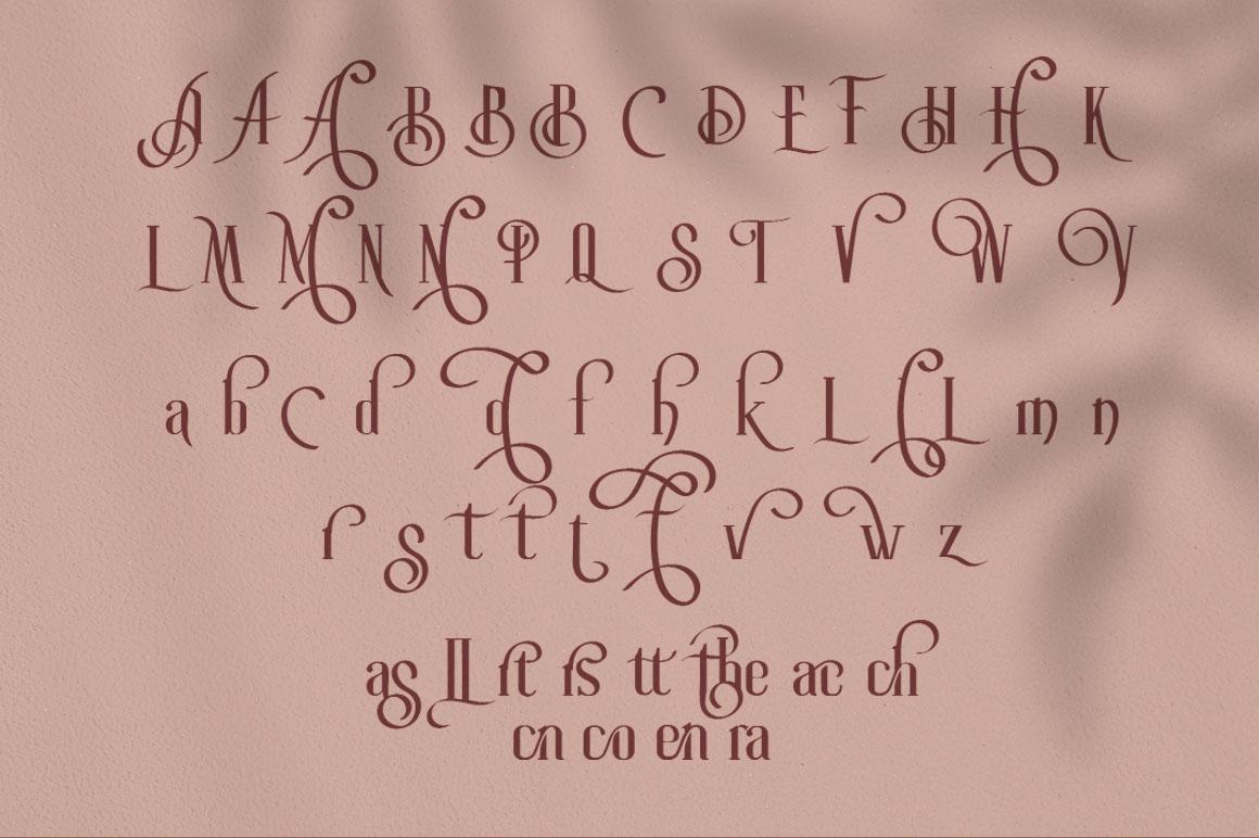 Roller Coaster Elegant Serif Extra example image 20