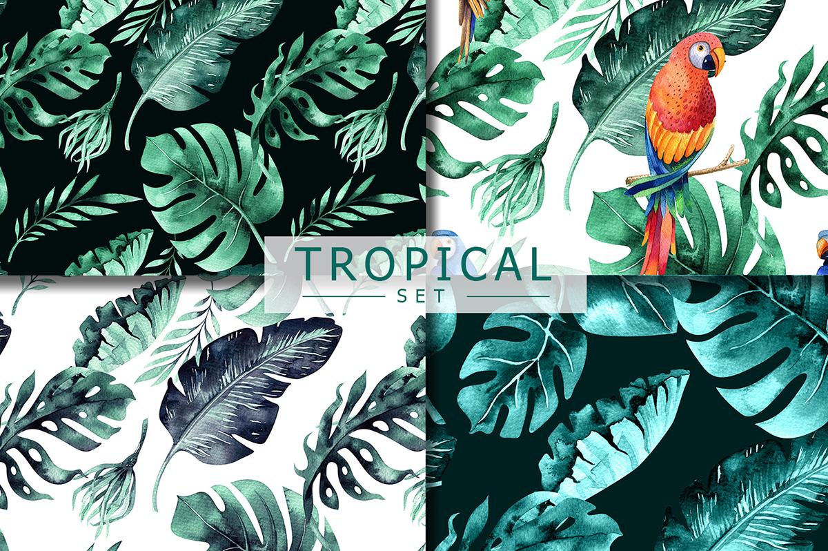 Tropical set I example image 10