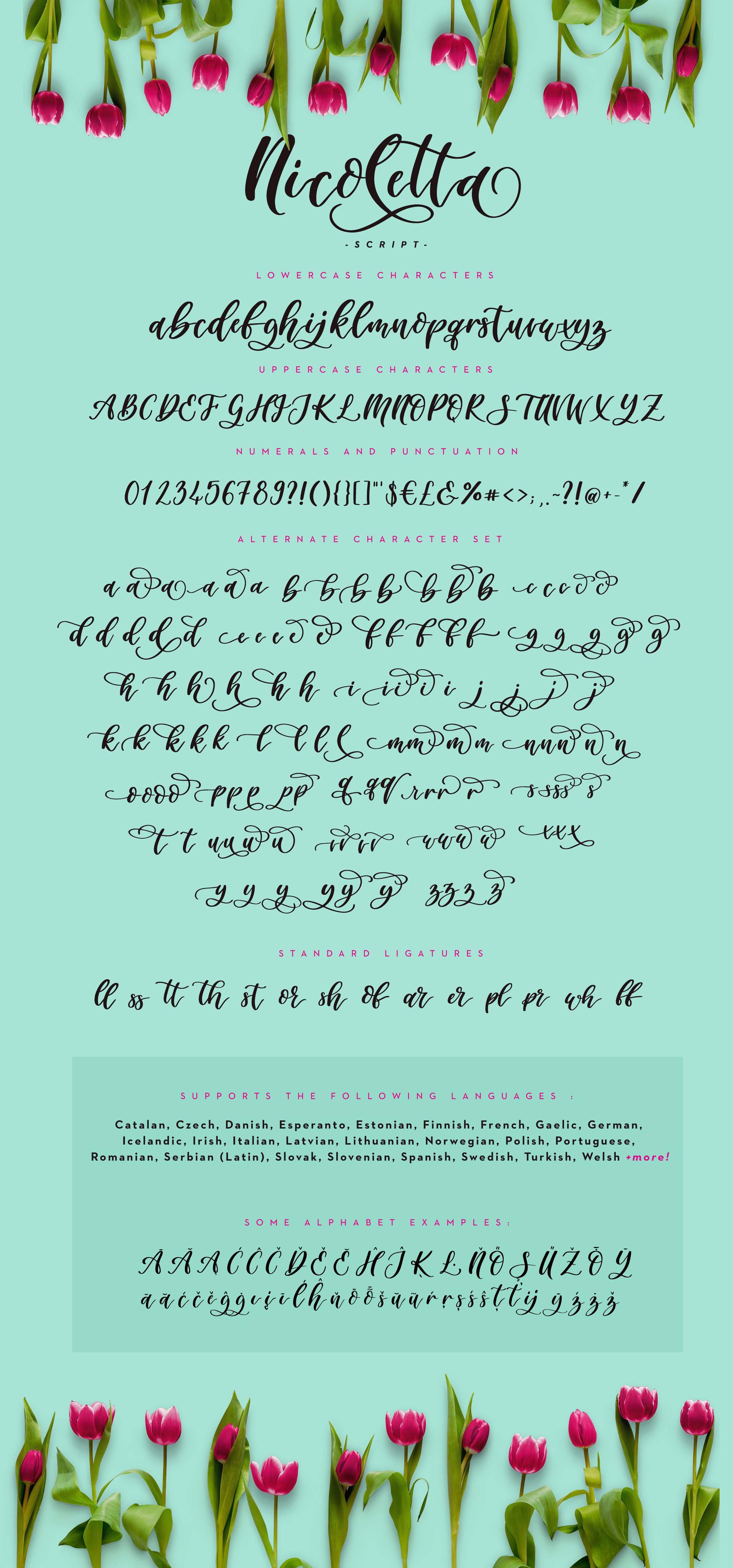 Nicoletta Script - A Handwritten, Multilingual Script Font example image 2
