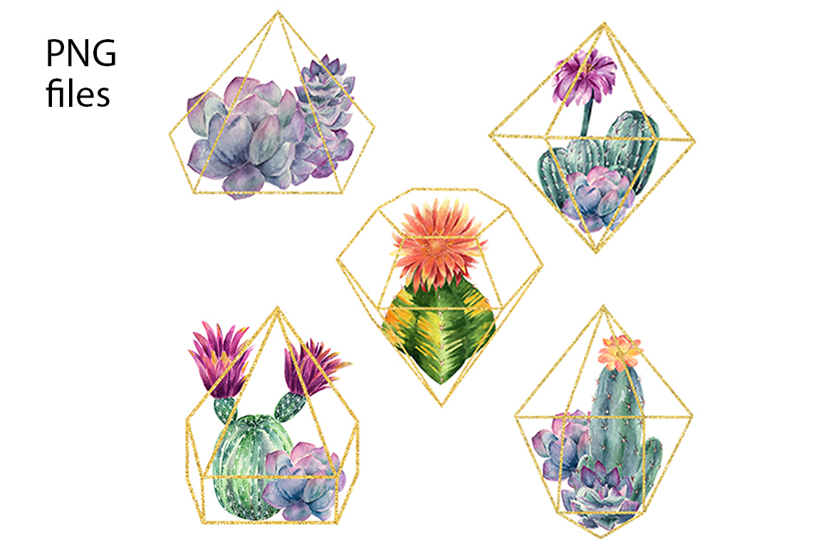 Watercolor Cactus and Flowers Clipart. example image 4