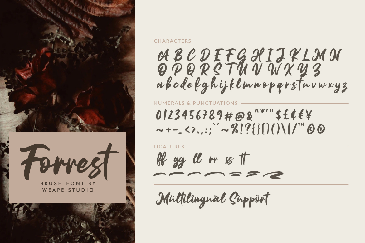Forrest - Brush Font example image 10