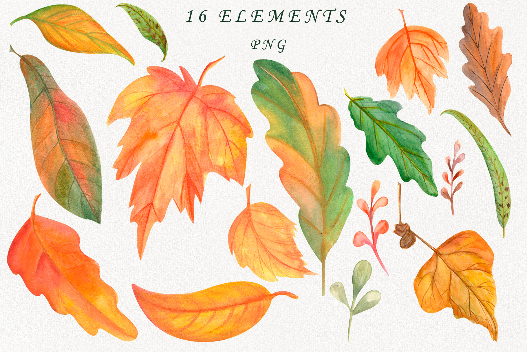 Autumn leaves watercolor clipart example image 2