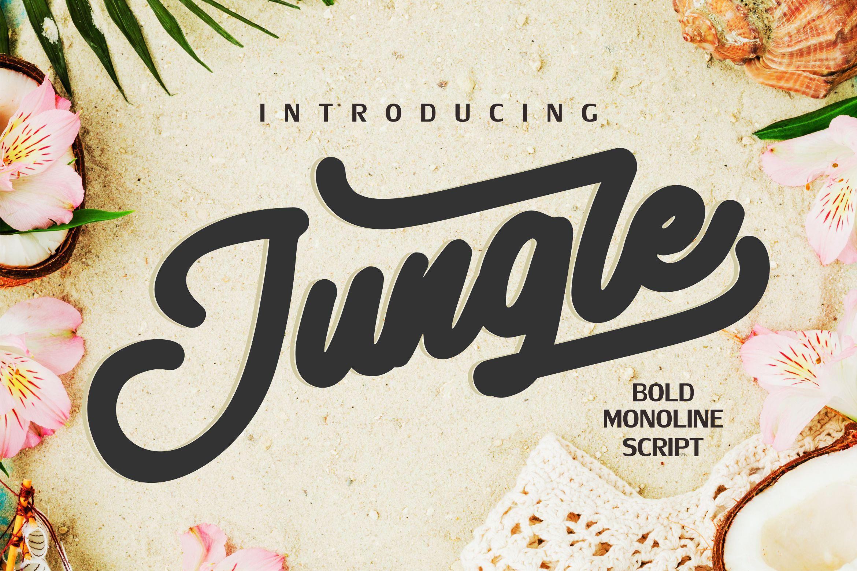 Jungle| Monoline Bold Font example image 1