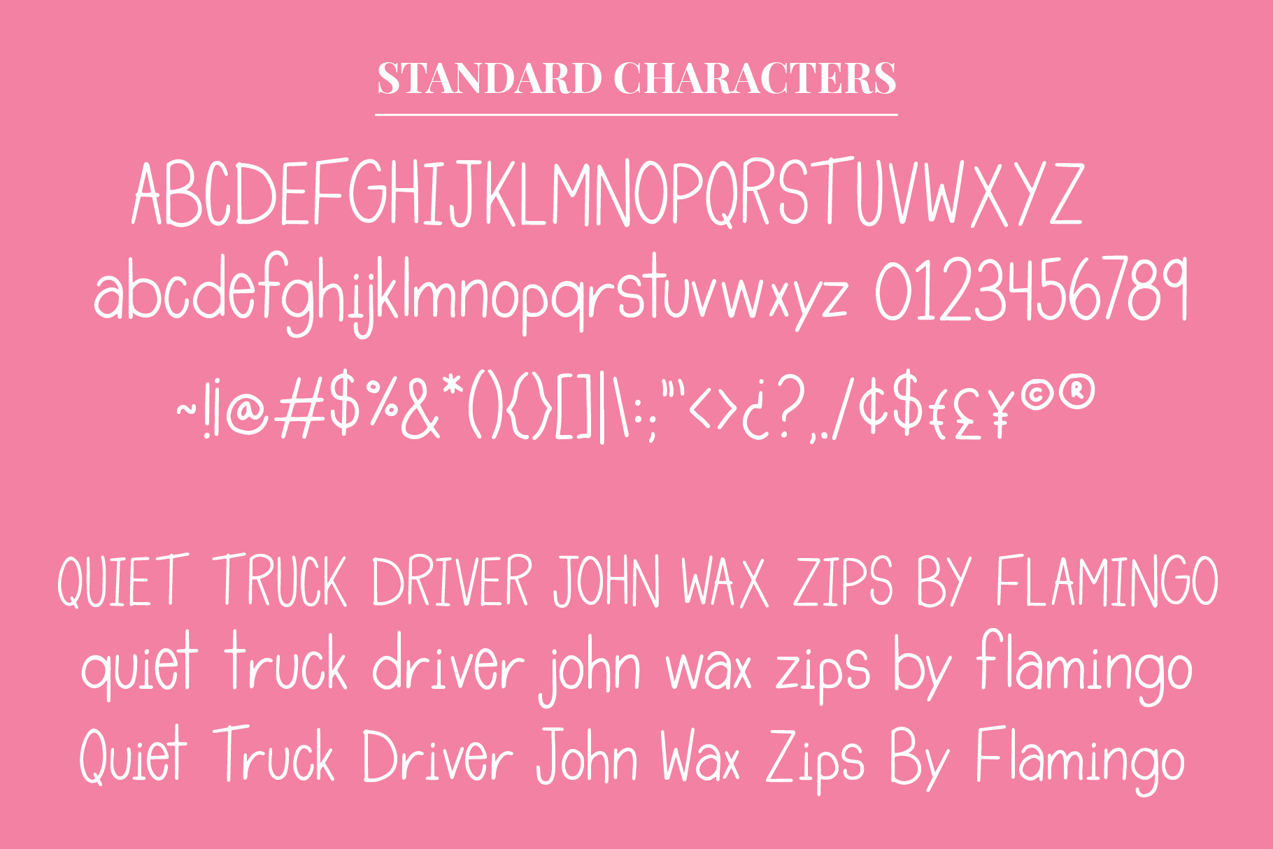 Tropical Flamingo Font Duo example image 2