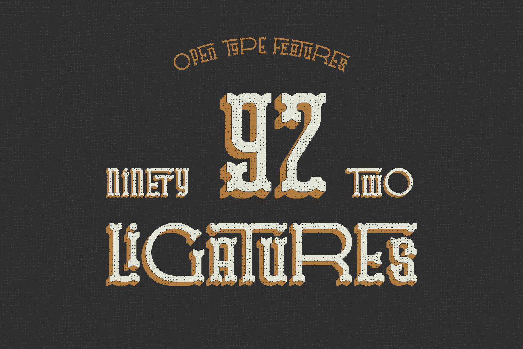 Traveler v.2 typeface example image 5