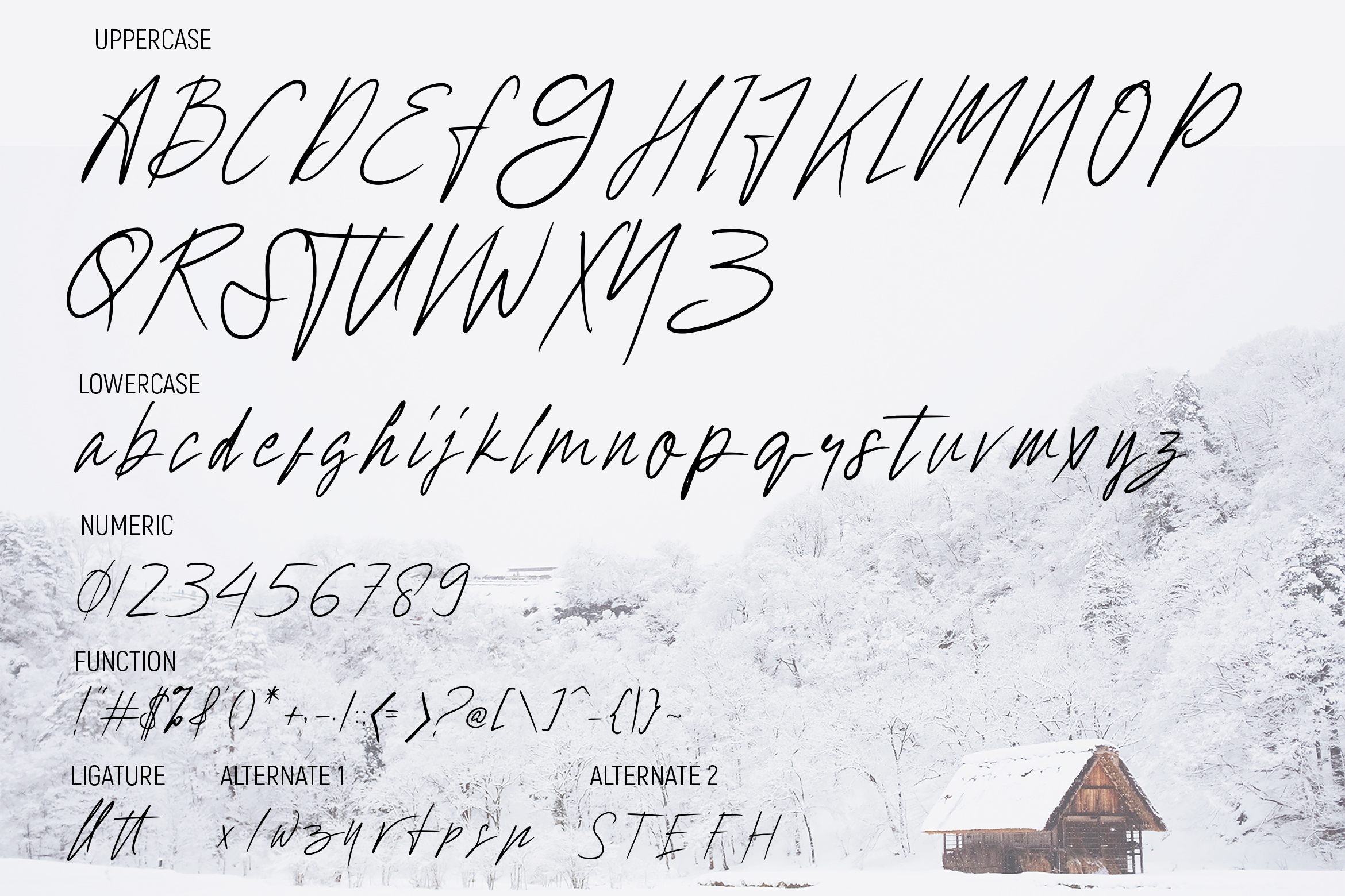 Hollywise - Signature Script Font example image 5
