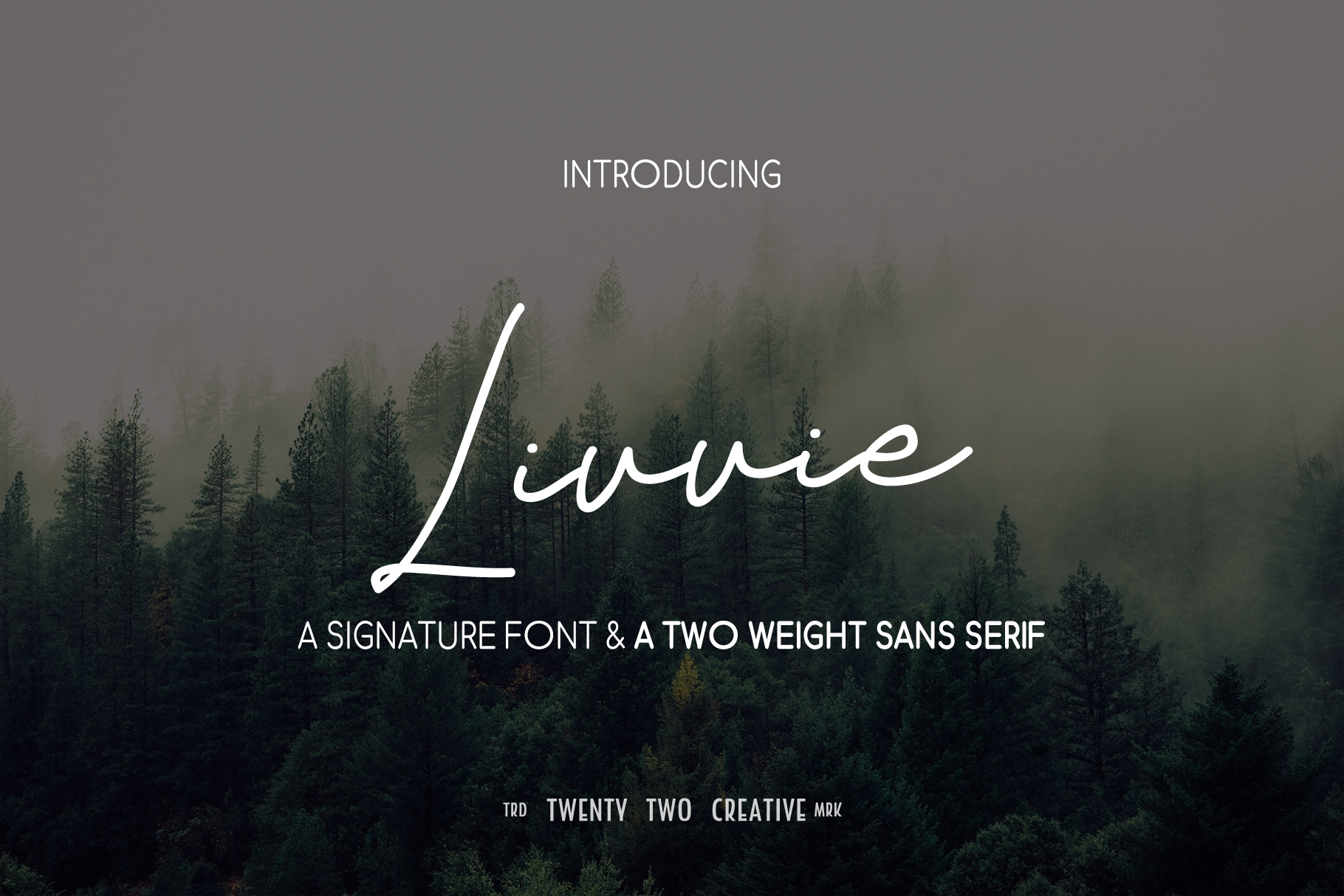 Livvie Signature and Sans Font Duo example image 1