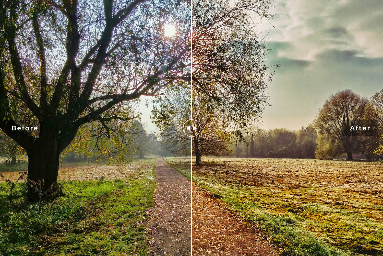 Nature Mobile and Desktop Lightroom Presets Collection example image 3