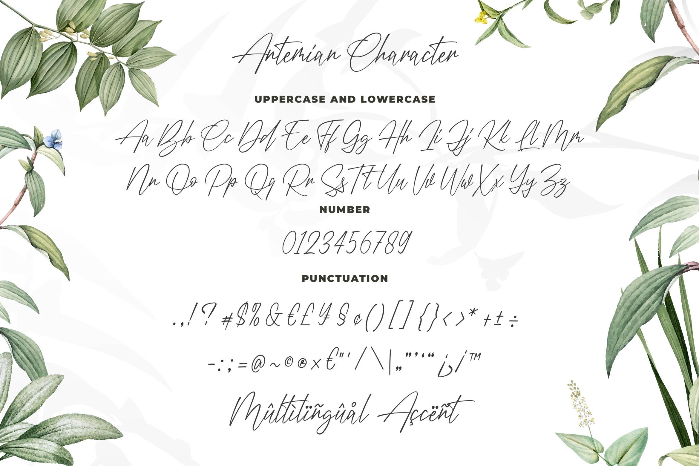 Antemian Classy Signature Font example image 5