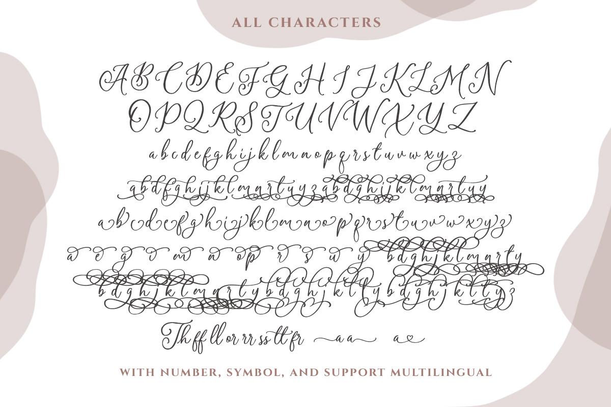Amerta Misty Script example image 9
