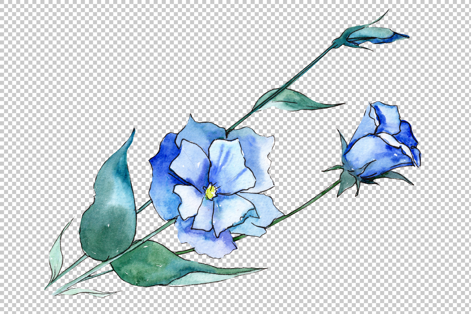 Blue and purple eustoma PNG watercolor set example image 4