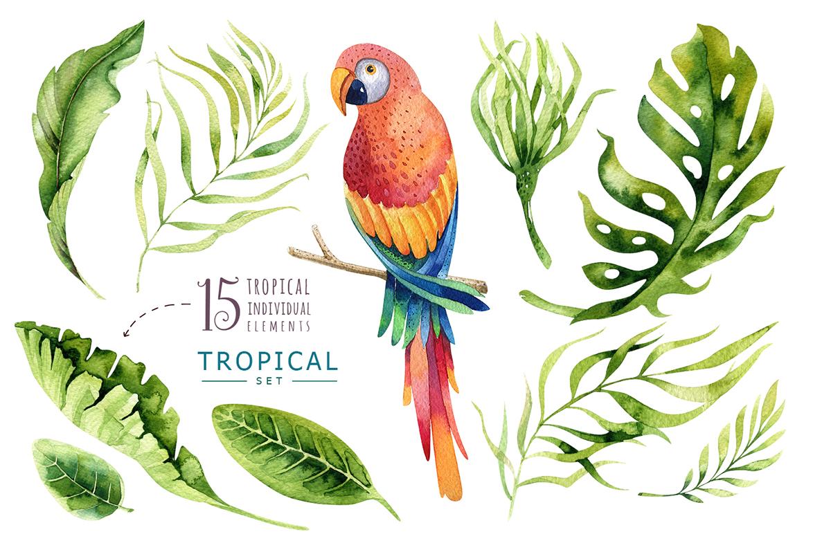 Tropical set I example image 6