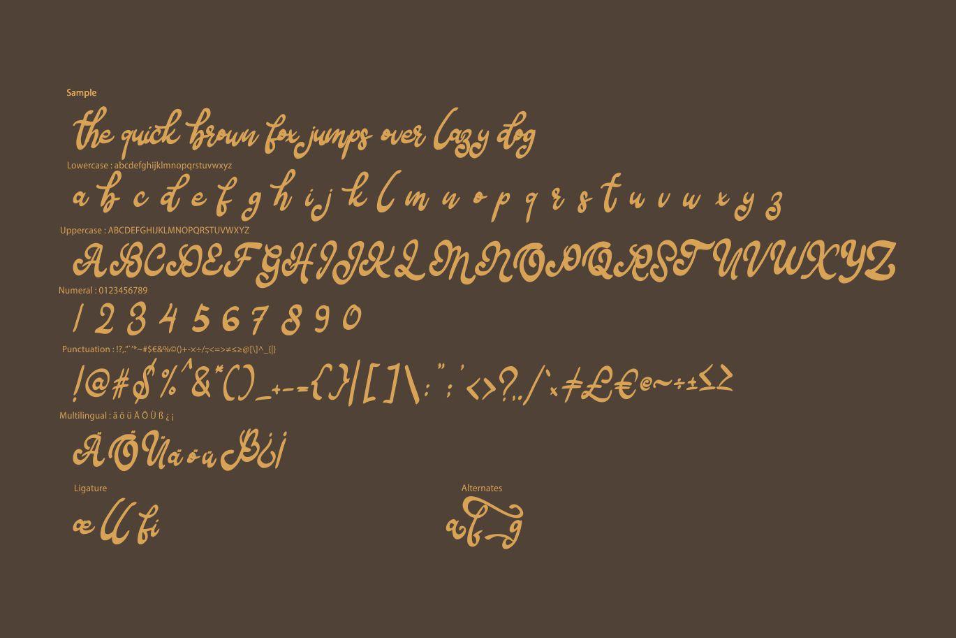 Bafera | Classico Script Font example image 6