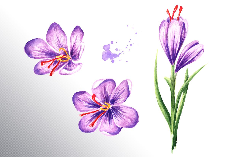 Saffron example image 4
